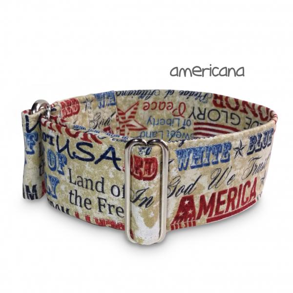 SALE americana