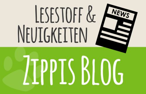 blog_widget2