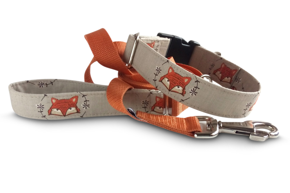 wild_fox_buckle_leash_fk