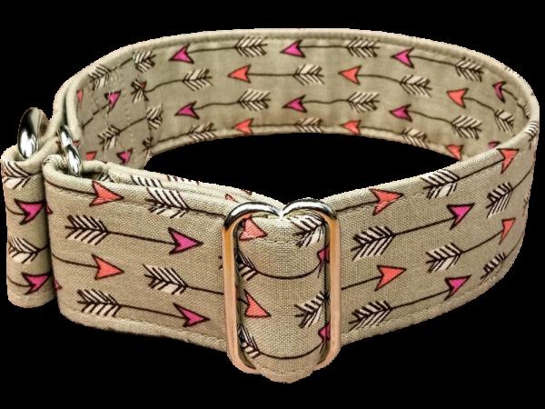 Hundehalsband arrow