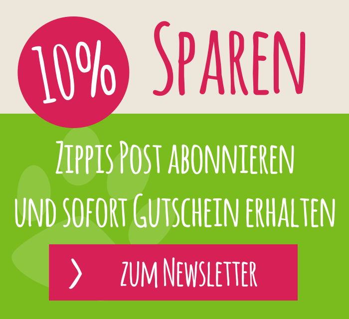 Newsletter_widget