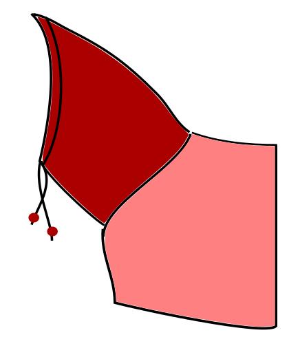 Kapuze