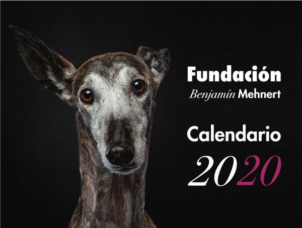 Galgo Kalender 2020