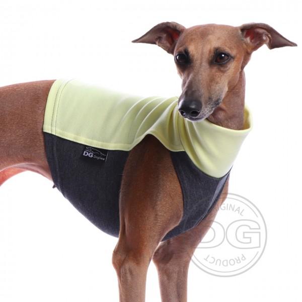 DG | Baumwollshirt  grün grau
