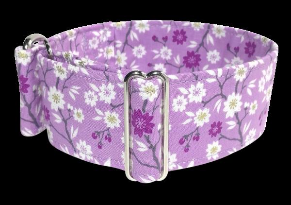 Zugstopphalsband 5cm