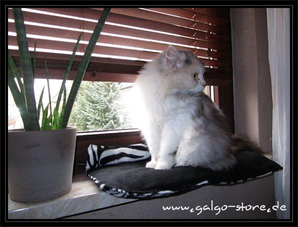 Fensterbankauflage *Zebra*