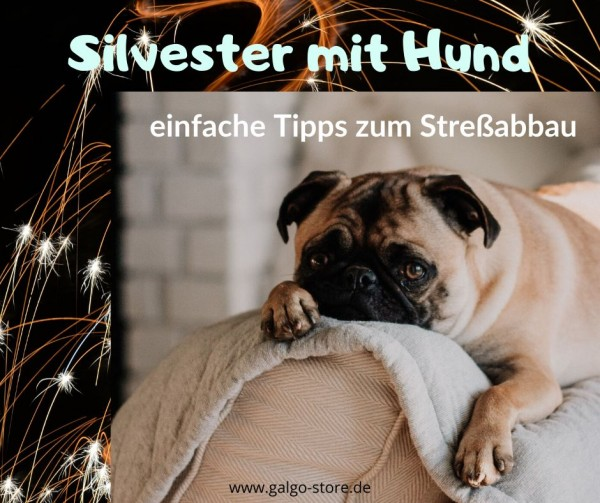 silvester_mit_hund2