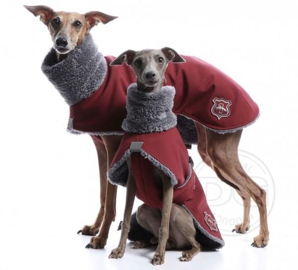 Jacke Italian Greyhound