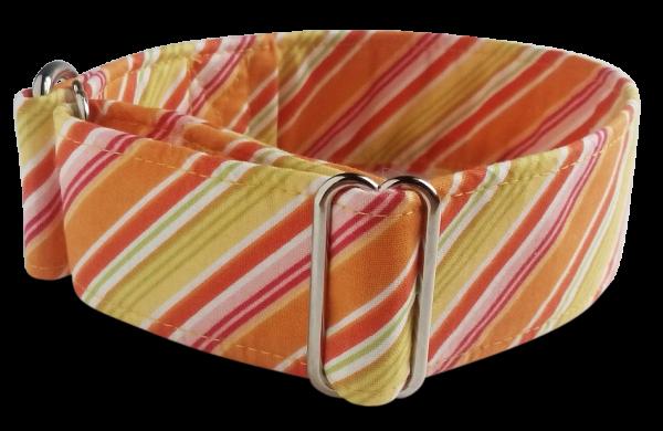 Hundehalsband galgo store