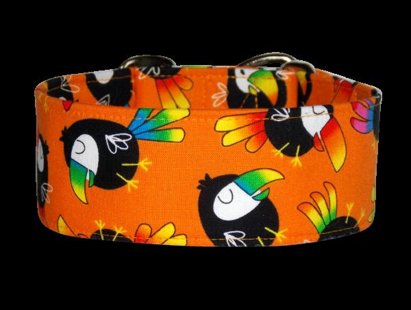 Toucan *orange*